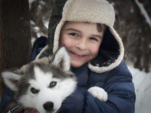 boy with his Husky dog
